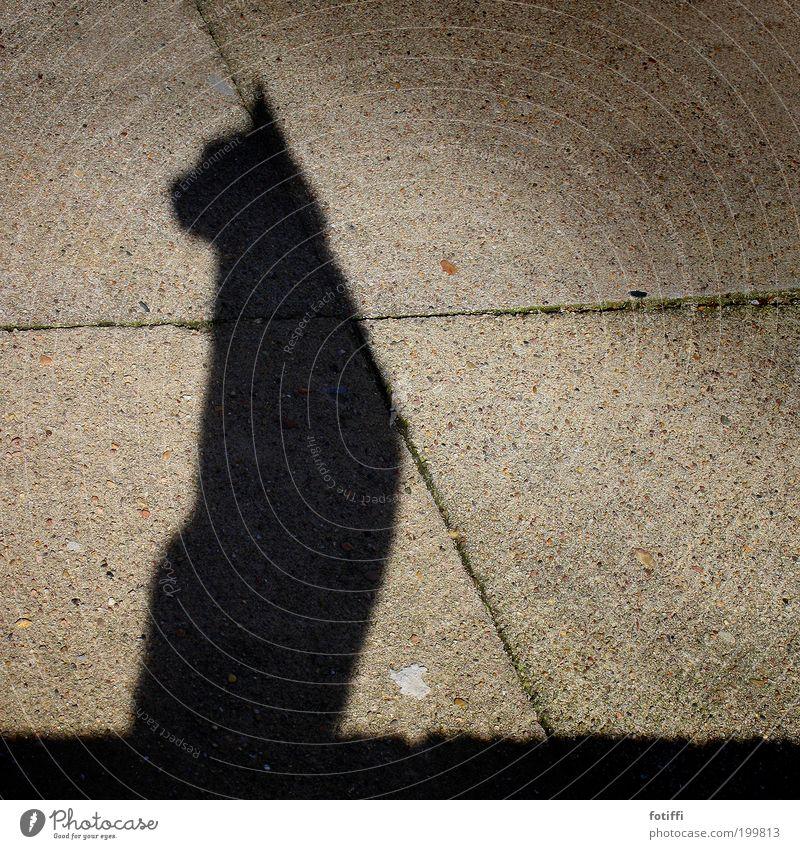 Cat Beautiful Animal Black Stone Elegant Sit Concrete Esthetic Posture Observe Sunbathing Crouch Egypt Rebellious Sublime
