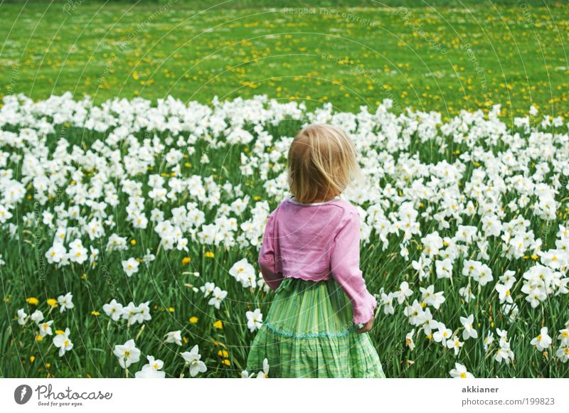 Human being Child Nature Green Plant Girl Flower Environment Meadow Landscape Warmth Garden Blossom Spring Bright Park