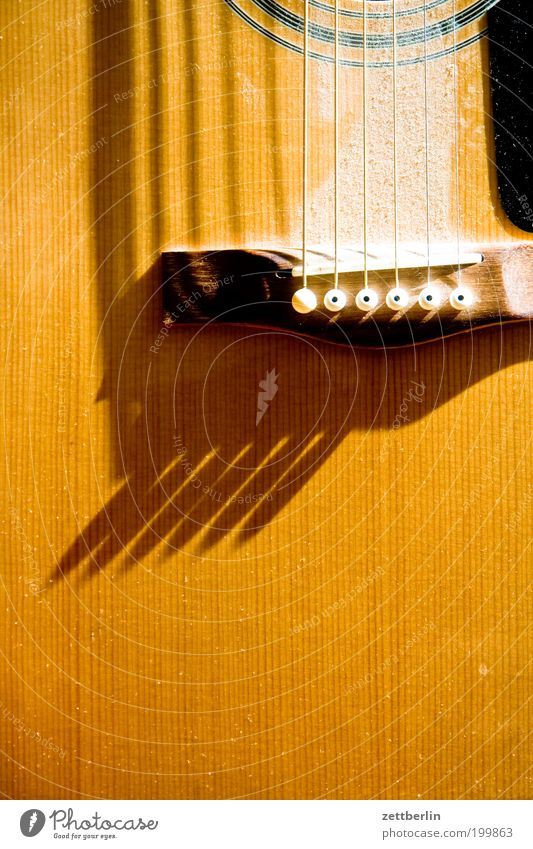 Bright Guitar Music Musical instrument Musical instrument string String instrument Dust Light Shadow Wood Acoustic Close-up Yellow