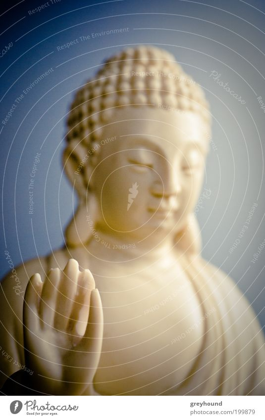 White Calm Religion and faith Sit Serene Friendliness Meditation Sculpture Exotic Belief Caution Wisdom Statue Buddhism Self Control Statue of Buddha