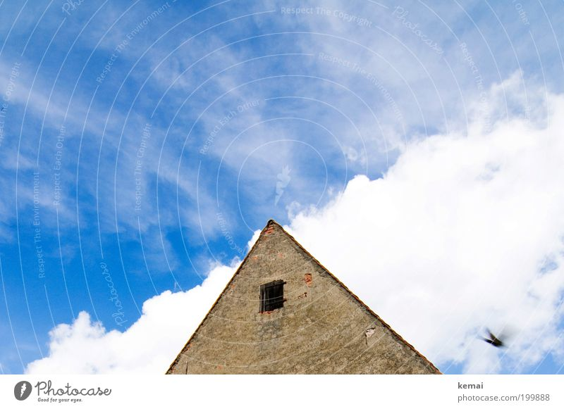 A swallow Sky Clouds Summer Beautiful weather Warmth Village House (Residential Structure) Detached house Wall (barrier) Wall (building) Facade Window Roof