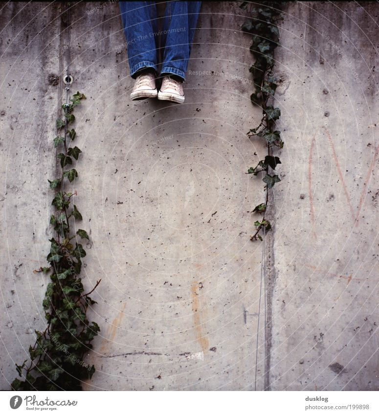 Human being Old Youth (Young adults) Plant Relaxation Wall (building) Gray Wall (barrier) Legs Park Feet Contentment Sit Wait Growth Jeans