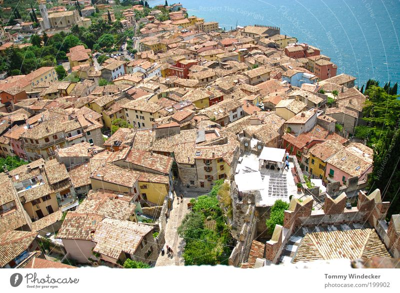 Over the roofs of...... Vacation & Travel Tourism City trip Summer vacation House (Residential Structure) Beautiful weather Coast Bay Lake Lake Garda Malcesine
