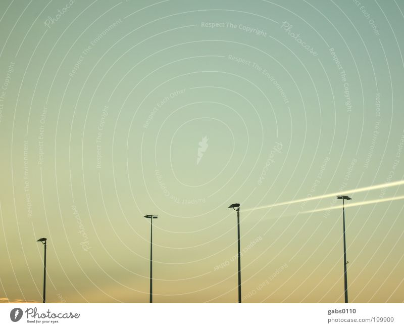 i i i i i Environment Sky Cloudless sky Climate Climate change Weather Beautiful weather Airport Wait Floodlight Vapor trail Vacation & Travel Expressionless