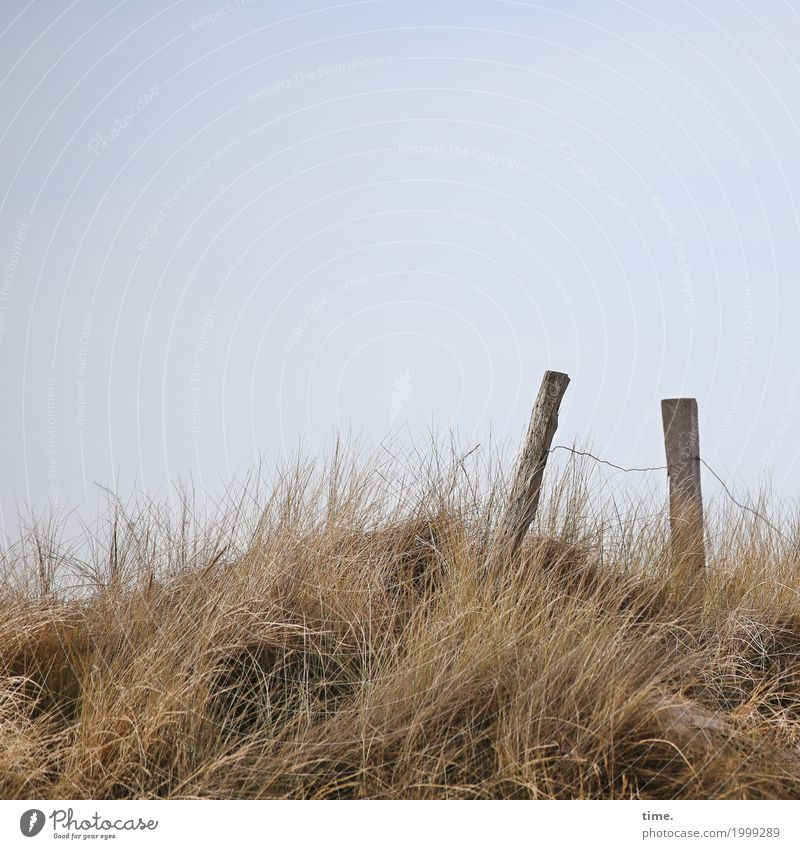 Voltage|drop Vacation & Travel Fence Fence post Sky only Agricultural crop Coast Beach dune Marram grass Nature reserve Wood Metal Signs and labeling Stand