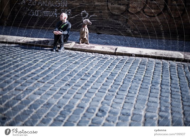Human being Man City Adults Street Dog Life Wall (building) Freedom Graffiti Lanes & trails Wall (barrier) Dream Friendship Wait Poverty