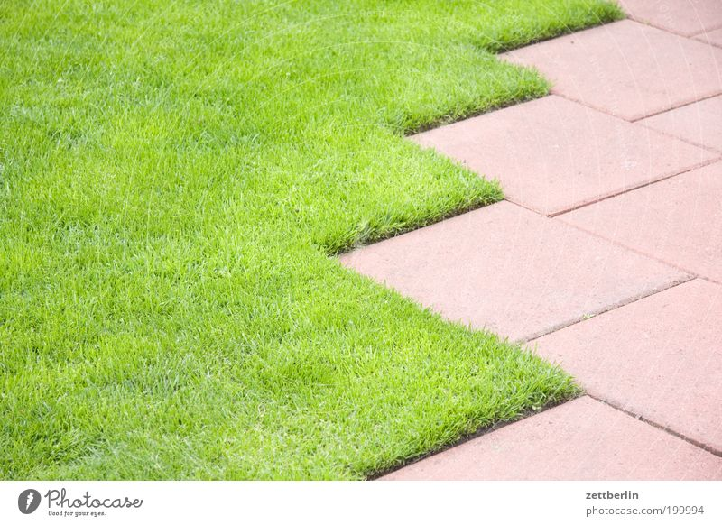 lawn edge Lawn Grass surface Meadow Carpet floor covering Garden Garden plot Garden allotments Sidewalk Lanes & trails Tile Geometry Arrangement Line Statistics