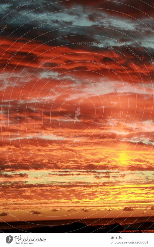Nature Ocean Summer Clouds Emotions Moody Earth Africa Elements Bizarre Sunset Dusk South Africa Sunbeam Multicoloured Light