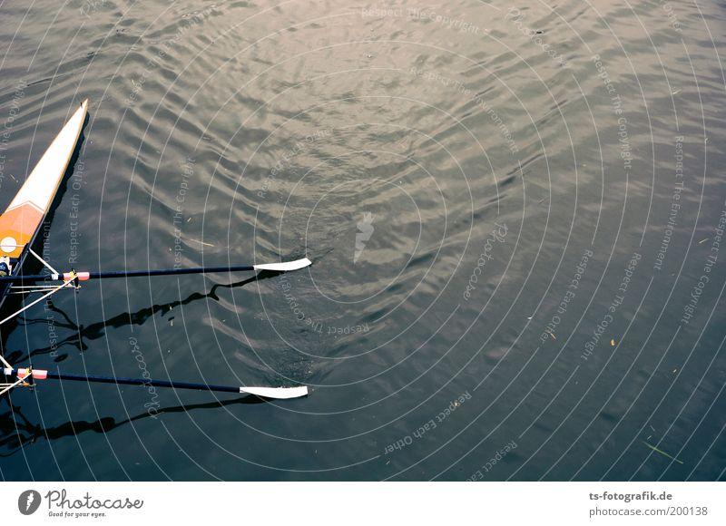 Blue Sports Waves River Canoe Sports Training Sporting event Surface of water Competition Section of image Aquatics Rowing Precision Rowboat Paddle