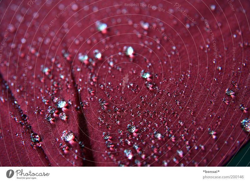 Water Red Spring Rain Weather Drops of water Wet Safety Near Protection Clean Thin To fall Umbrella