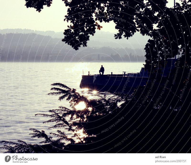 Where 'five' lives Human being 1 Lakeside Lake zurich Moody Footbridge Jetty Surface of water Reflection Vacation photo Relaxation Recreation area Colour photo