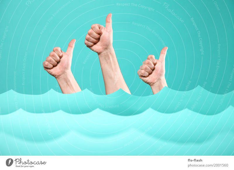 Human being Vacation & Travel Blue Ocean Joy Style Business Swimming & Bathing Design Weather Waves Success Adventure Academic studies Team Education