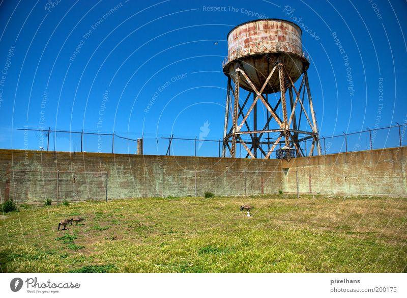 Old Sky Green Blue Summer Meadow Wall (building) Grass Wall (barrier) Landscape Trip USA Derelict Decline Rust Historic