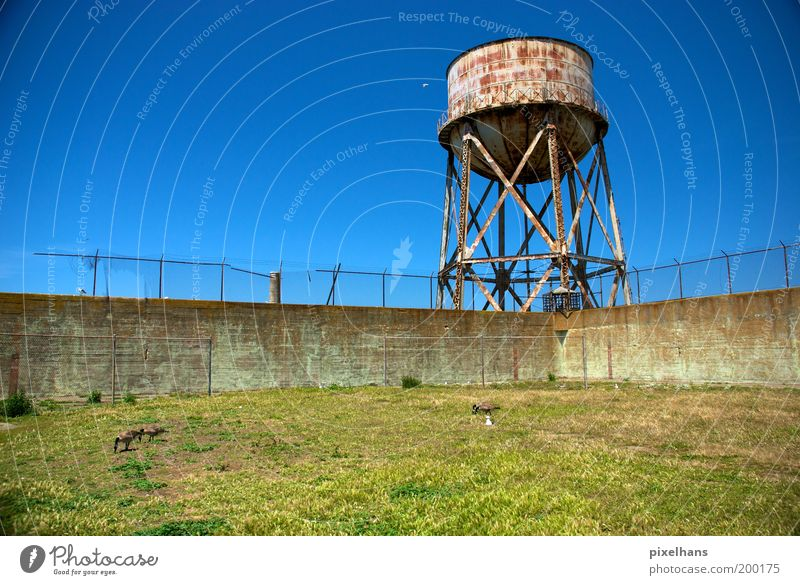 the other day in the garden... Landscape Sky Cloudless sky Summer Grass Meadow Alcatraz San Francisco California USA Deserted Water tower Wall (barrier)