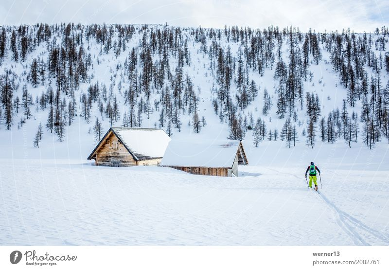 ski tour Hochmölbinghütte, Ennstal, Styria, Austria, Alps Winter sports Skis Ski tour Human being Masculine 1 Environment Nature Landscape Snow Mountain Hut
