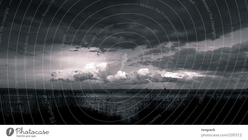 Sky Nature White Clouds Black Environment Landscape Freedom Lake Air Rain Horizon Weather Energy Esthetic Illuminate
