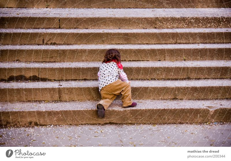 Steep path Human being Toddler Infancy 1 1 - 3 years Stairs Crawl Small Discover Resolve Effort Conquer Beautiful Cute Study Ascending Colour photo