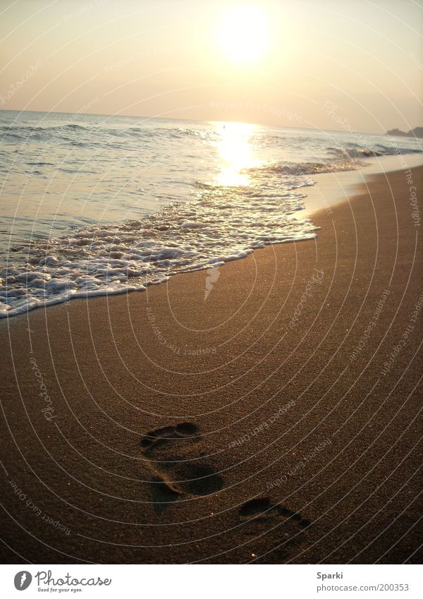 Water Sun Ocean Beach Vacation & Travel Far-off places Freedom Happy Sand Coast Horizon Future Footprint Tracks Beach vacation