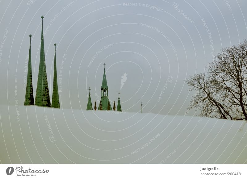 Erfurt Sky Winter Snow Tree Park Hill Town Deserted House (Residential Structure) Church Dome Manmade structures Building Architecture Roof Tourist Attraction