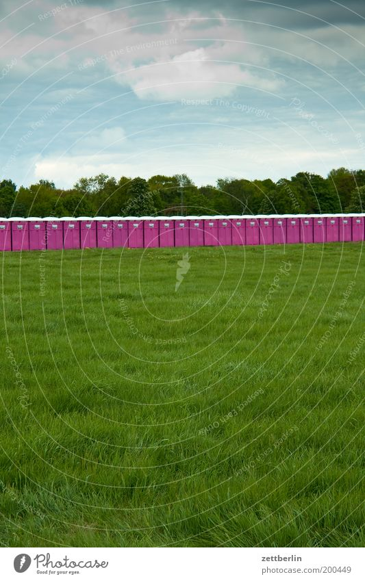 Sky Summer Meadow Grass Park Field Lawn Violet Grass surface Toilet Toilet Concert Event Row Many Festival
