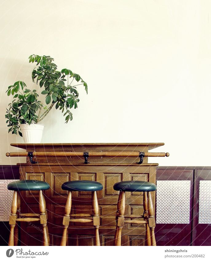 Old Green Blue Plant Style Wood Brown Design Closed Empty Bar Gastronomy Interior design Restaurant Furniture Historic