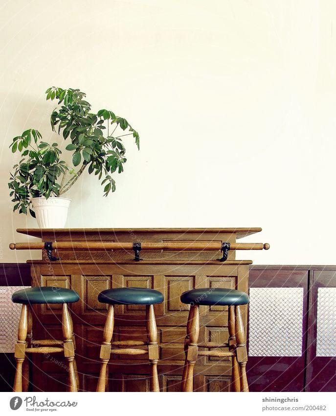 Old Green Blue Plant Style Wood Brown Design Closed Empty Bar Gastronomy Interior design Restaurant Furniture Historic