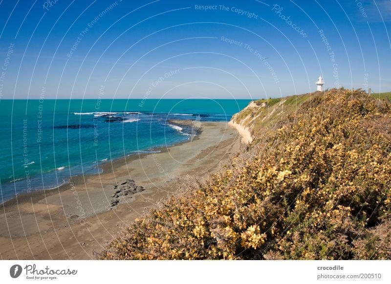 Nature Water Beach Far-off places Meadow Sand Landscape Contentment Waves Coast Environment Horizon Rock Hope Fantastic Infinity