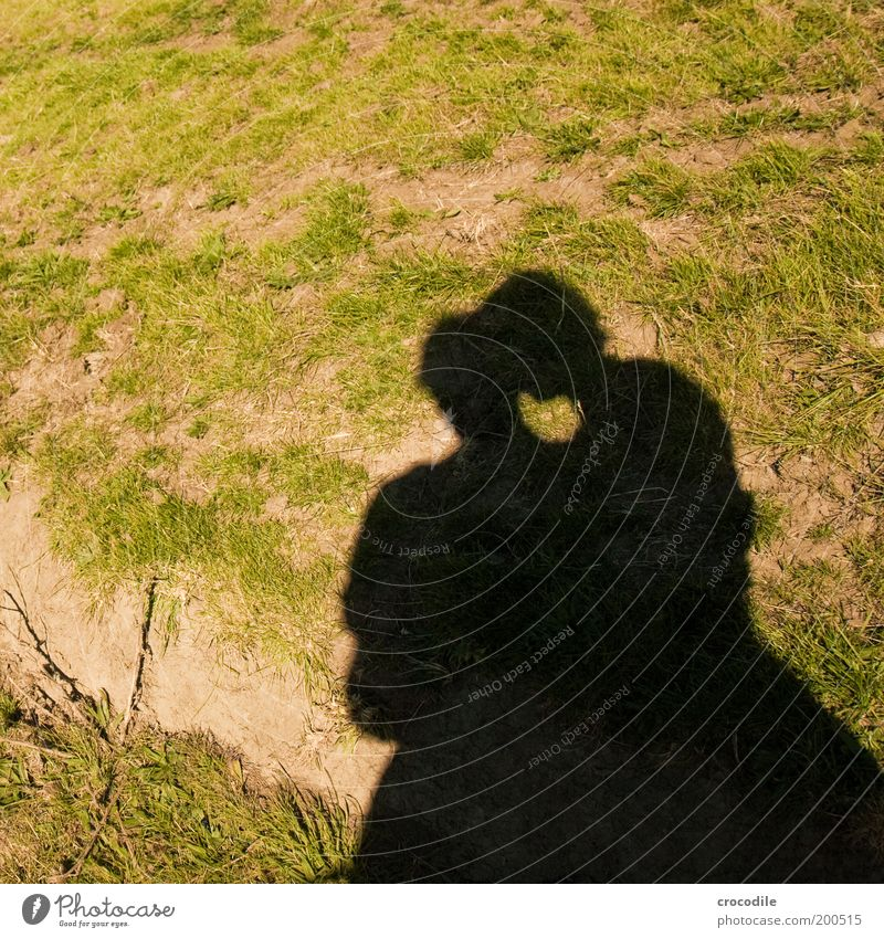 New Zealand 69 Human being Masculine Young woman Youth (Young adults) Young man 2 Environment Nature Landscape Sunlight Beautiful weather Meadow Emotions Joy