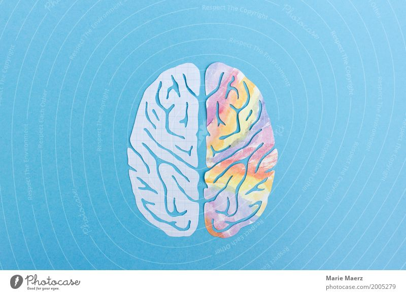 Left Brain Halves, Right Brain Half - Logic & Creativity Brain and nervous system Think Study Reading Together Curiosity Blue Multicoloured Power Experience