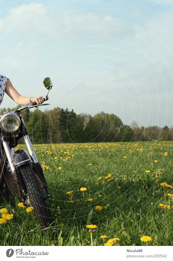 motor bee Lifestyle Leisure and hobbies Human being Nature Sky Clouds Spring Beautiful weather Grass Meadow Forest Motorcycle Freedom Nostalgia Break