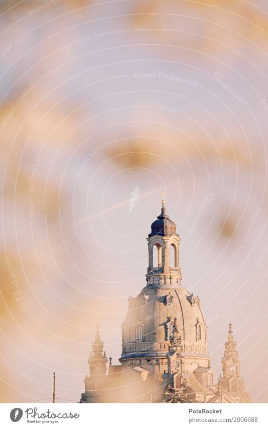 #A# Dresden in spring I Art Esthetic Frauenkirche Baroque Baroque garden Spring Spring day Spring colours Spring celebration Domed roof Tower Sky Blossoming