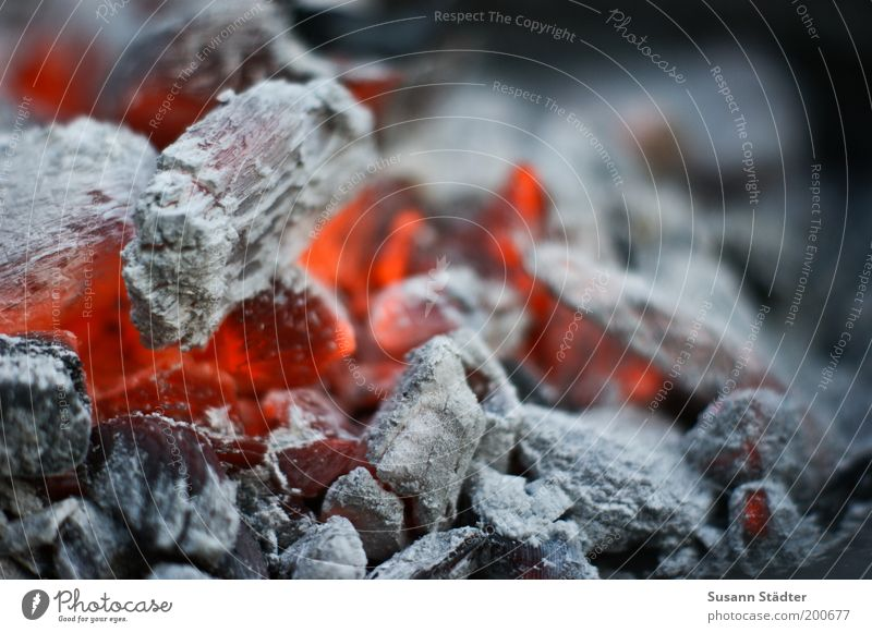 Summer is for barbecuing Glow Fire Ashes Hot Warmth Red Landscape format Colour photo Exterior shot Detail Macro (Extreme close-up) Red hot Copy Space right