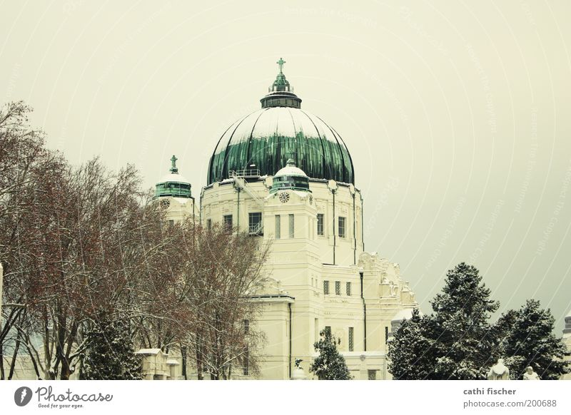 central cemetery/winter Sky Cloudless sky Winter Tree Park Vienna Austria Europe Capital city Outskirts Church Manmade structures Building Roof Domed roof
