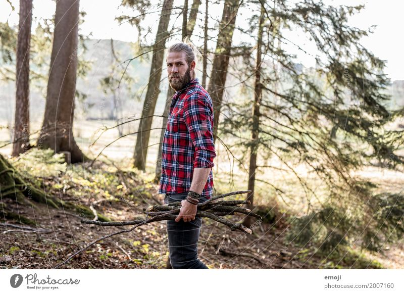 Human being Nature Youth (Young adults) Man Young man Landscape Forest 18 - 30 years Adults Environment Natural Wood Masculine Branch Sustainability Accumulate