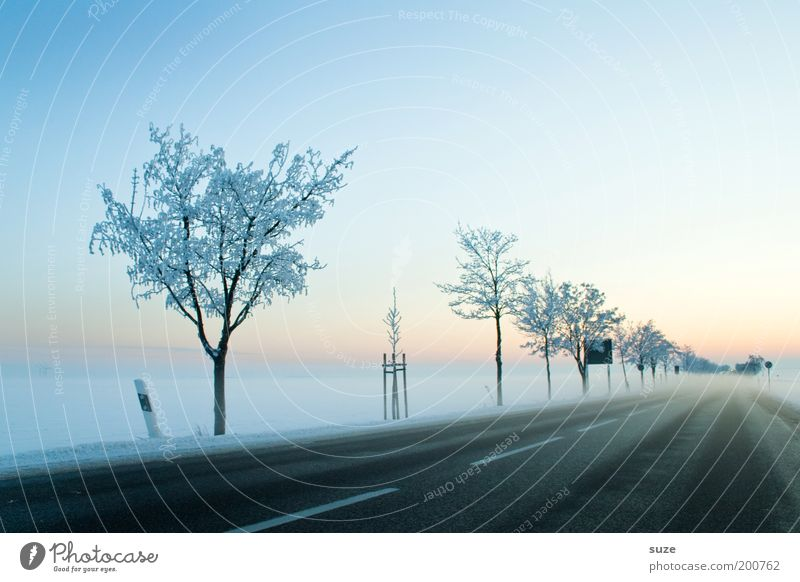 cold start Environment Nature Landscape Elements Sky Cloudless sky Horizon Winter Beautiful weather Fog Ice Frost Snow Tree Transport Traffic infrastructure