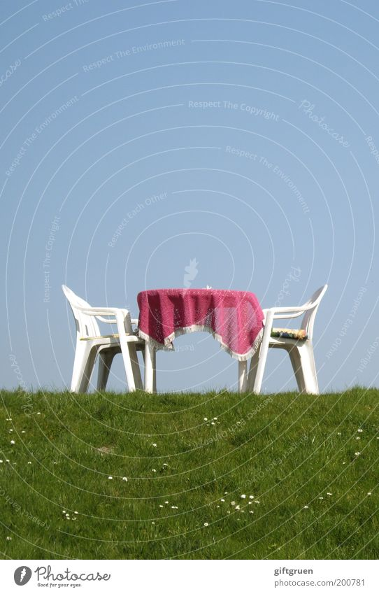 Sky Summer Meadow Grass Pink Tourism Gloomy Table Trip Beautiful weather Chair Plastic Furniture Restaurant Café Daisy