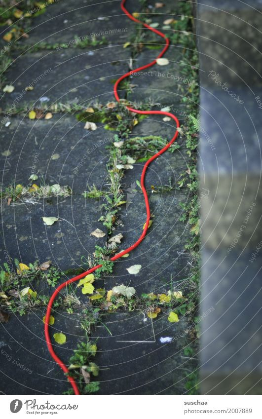 the red thread String Red red string Handbook Meandering Whorl Hose Cable power supply Energy Light