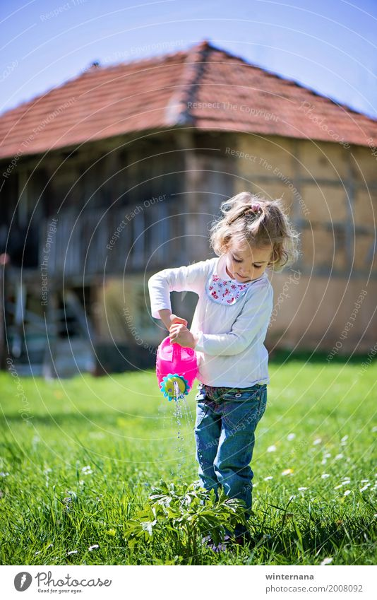Little helper Freedom Sun Gardening Water can Human being Girl 1 3 - 8 years Child Infancy Environment Nature Plant Sky Cloudless sky Spring
