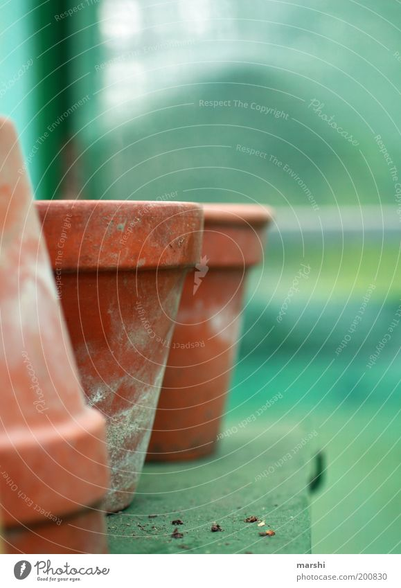 Green Empty Flowerpot Blur Clay pot