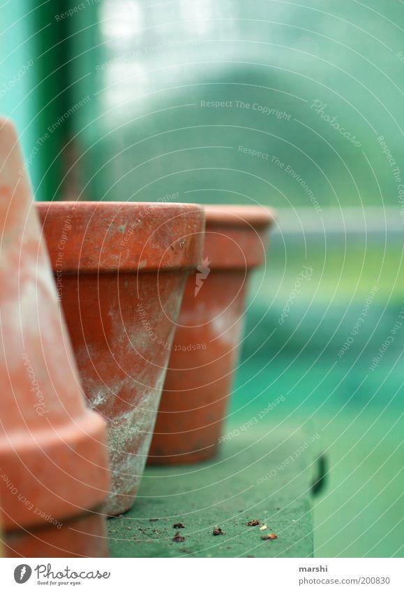 Green Empty Flowerpot Blur Clay pot