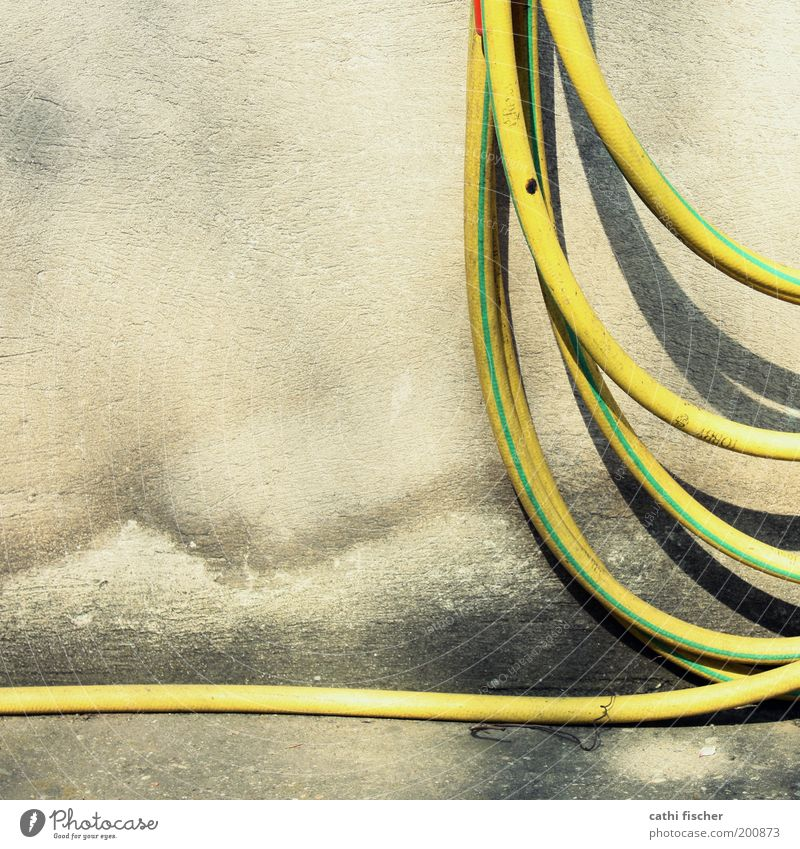 coiled Wall (barrier) Wall (building) Terrace Concrete Plastic Old Dirty Wet Yellow Green Hose Garden hose Damp Hang Colour photo Exterior shot Day Shadow