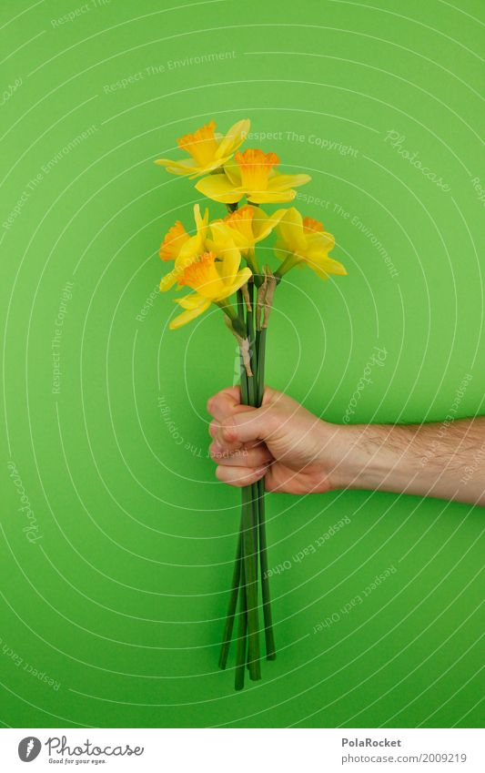 #AS# Büdddeee! Art Esthetic Flower Bouquet Flower stalk Narcissus Easter Easter wish Easter Monday Easter gift Green Hand To hold on Gift Mother's Day