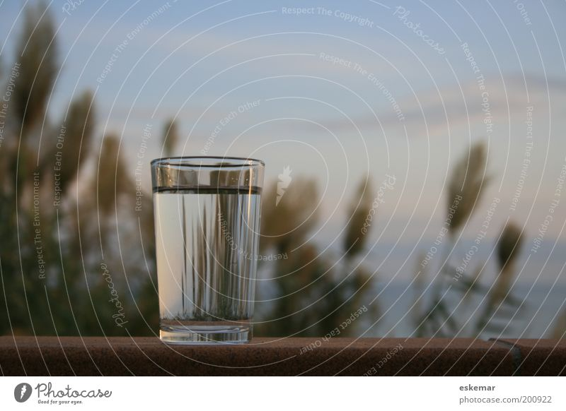 Glass of water Food Beverage Cold drink Drinking water Water Tumbler Nature Sky Ocean Mediterranean sea Simple Fresh Healthy Clean Horizon Wall (barrier)