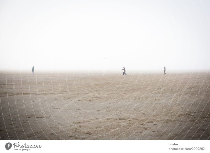 plenty of room to play Joy Playing Frisbee Masculine Friendship 3 Human being 18 - 30 years Youth (Young adults) Adults Sand Fog Beach Sports Exceptional