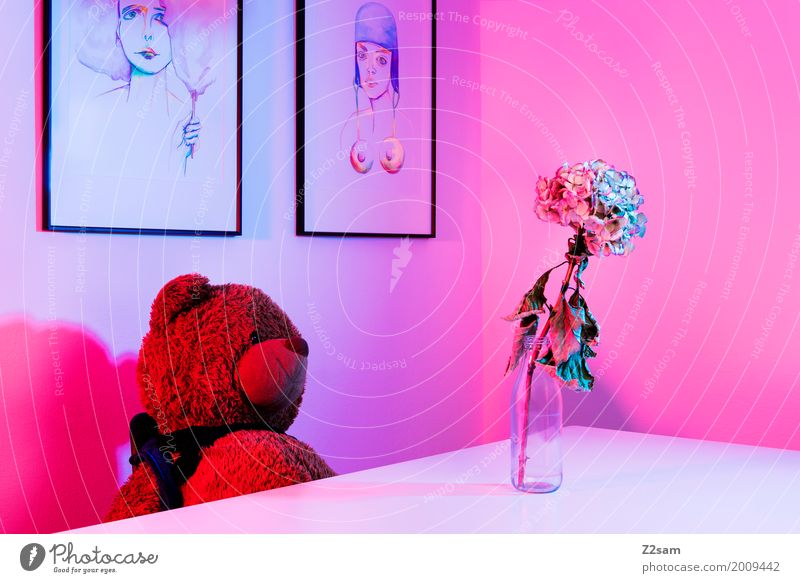 3000!!!!!!!!!! PUSH ME! Lifestyle Elegant Style Living or residing Flat (apartment) Table Room Flower Teddy bear Flower vase Painting and drawing (object) Art