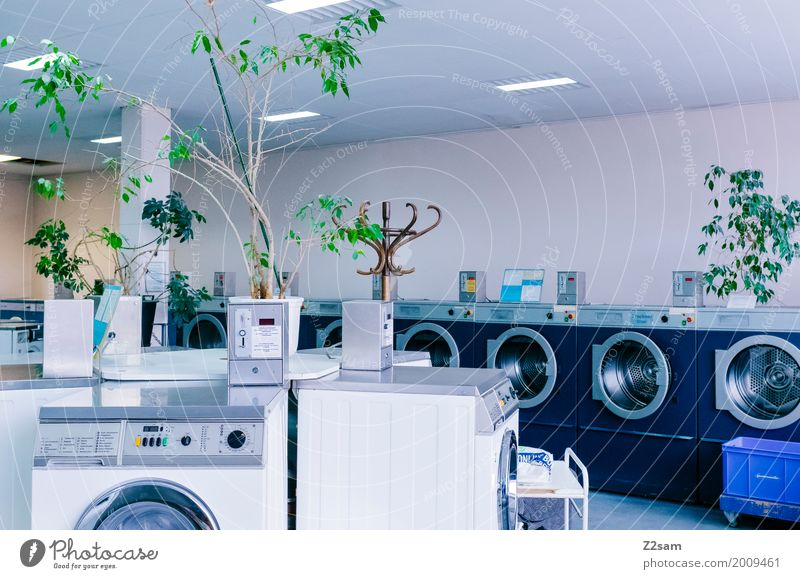 Nice and clean Washer Plant Town Building Architecture Laundry Old Hip & trendy Cold Retro Clean Trashy Gloomy Blue Green Calm Design Loneliness Colour