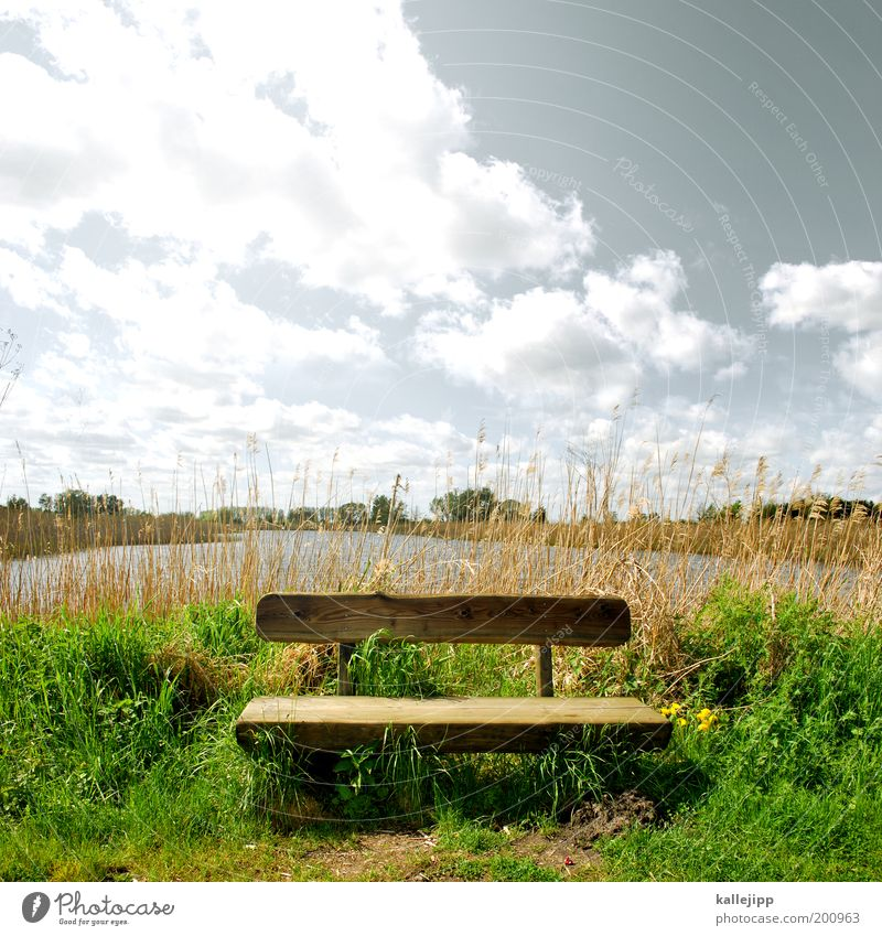 Sky Nature Water Plant Sun Vacation & Travel Clouds Calm Far-off places Freedom Environment Air Lake Earth Trip Hiking