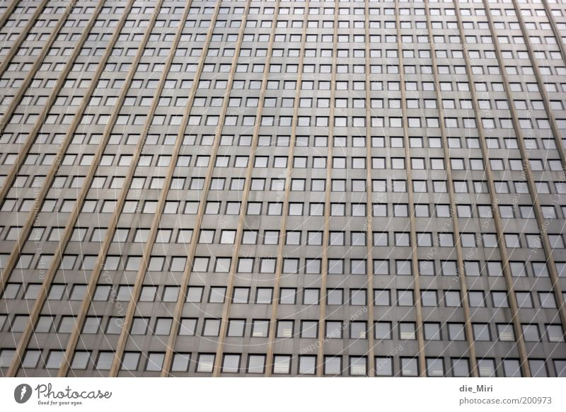 City Window Gray Stone Brown Glass Facade High-rise Gloomy Row Office building Matrix Manmade structures Mesh grid