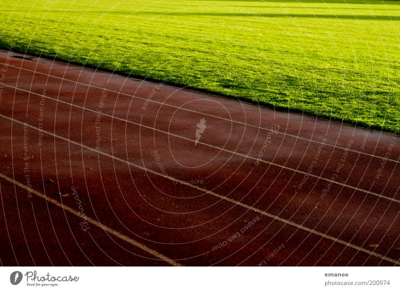 racecourse Sports Track and Field Sporting event Sporting Complex Football pitch Stadium Sun Grass Meadow Dark Wet Warmth Green Red Line Running sports