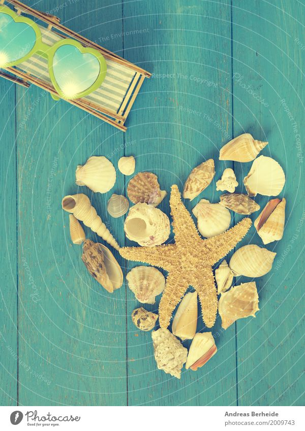 time-out Relaxation Vacation & Travel Summer Beach Retro heart shape shell sea holiday starfish Symbols and metaphors romantic romance decoration shaped